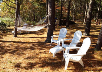 pet friendly by owner vacation house rental in cape cod