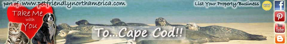 pet friendly cape cod